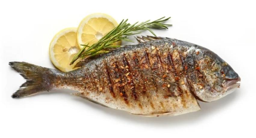 el sardinero